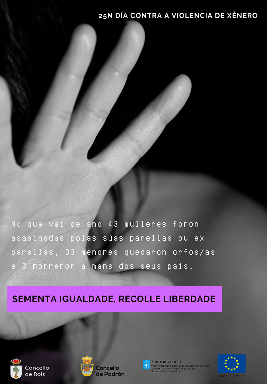 20181121 Rois Dia contra Violencia Xenero cartel